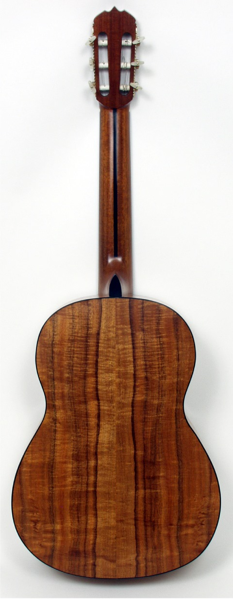 Keith Adams Guitar - Back